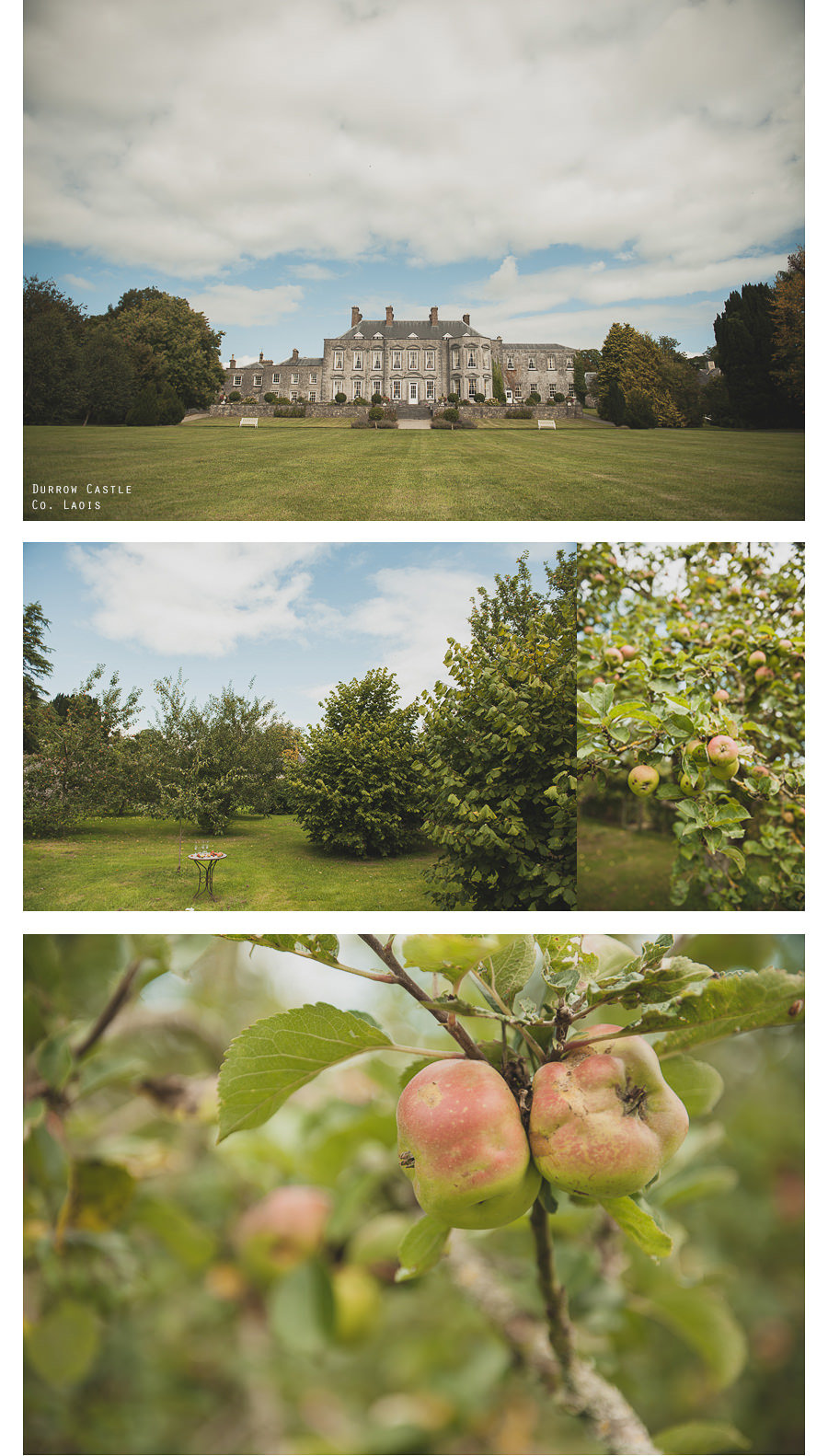 Wedding Location | Durrow Castle, Co. Laois